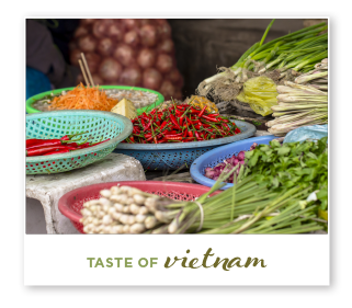 taste-vietnam.png